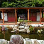 涅槃堂前の池