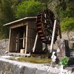 竹中池水車